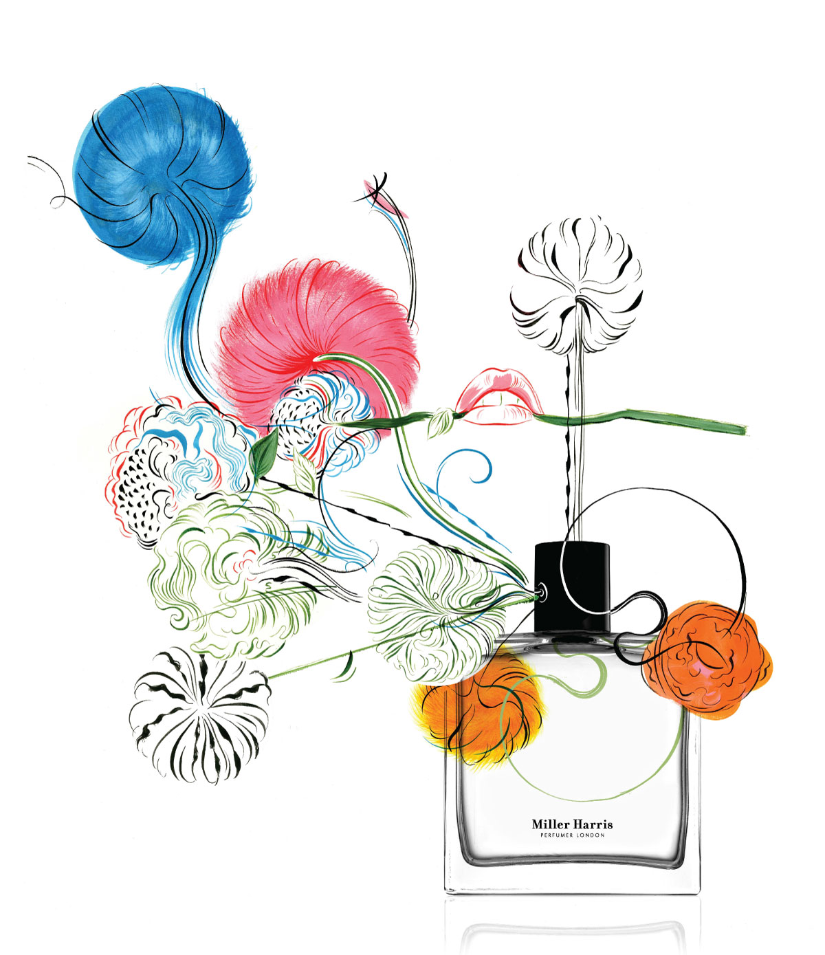 Miller Harris – Perfume Collection